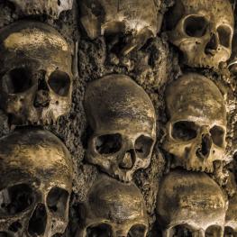 category_epidemic_plague_dead