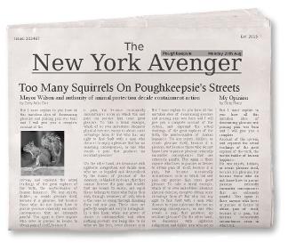 Informationsquellen_New_York_Avenger